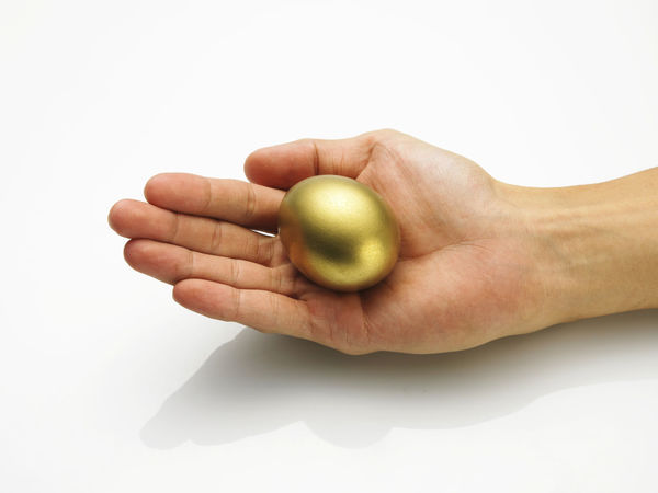 Palm holding a golden egg Conceptcar Gold Rich Abstract Close-up Day Golden Egg Holding Human Body Part Human Finger Investment Men One Person People Studio Shot Wealthy Living White Background