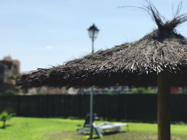 Thatched Roof Roof Built Structure Architecture Day Building Exterior Protection No People Outdoors Shelter Grass Close-up Nature Sky