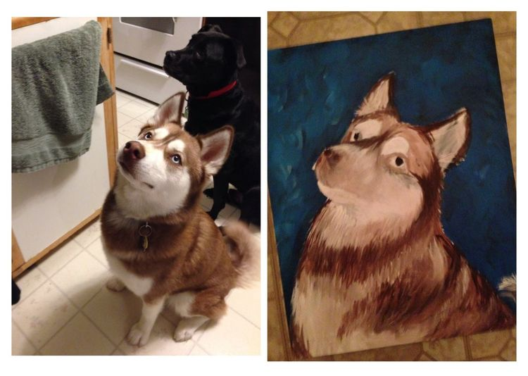 Juno My Art Dog My Painting Husky not done yet