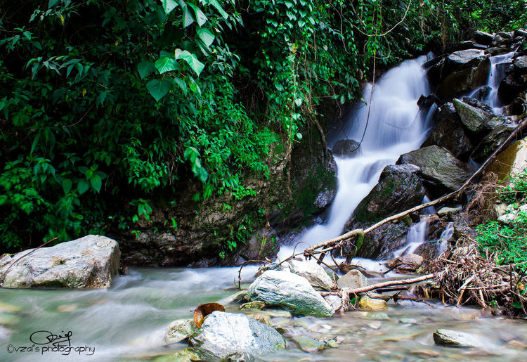 Water Nature River Forest Beauty In Nature Waterfall Motion Outdoors Tranquility Day First Eyeem Photo Indiatravelgram Indiaincredible Indianstories EyeEmNewHere Landscape_photography Indianphotography Indiapictures Arunachal Pradesh India