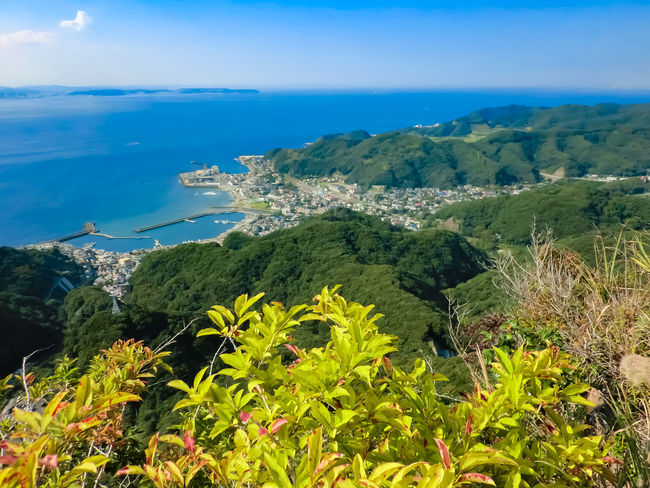 Beauty In Nature Blue Chiba Fishing Port Forest Green Color Growth Japan Landscape Landscapes With WhiteWall Mountain Nature No People Outdoors Pacific Ocean Plant Sea Sky Summer Tokyo Bay Tree Water White