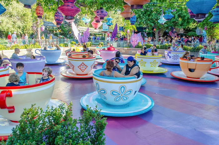 ANAHEIM, CALIFORNIA, AUGUST 27: Mad Tea Party attraction at Disneyland Park in Anaheim, California, on August 27, 2012. This is one of the oldest and most traditional attractions in the theme park Art And Craft Ceramics Choice Creativity Cup Day Decoration Flower Flower Pot Flowering Plant Growth Human Representation Multi Colored Nature No People Outdoors Plant Potted Plant Representation Table