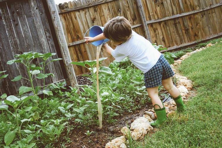 Rear view of boy watering plants at yard