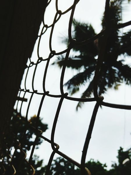 Up Close Street Photography Mesh Wire Fence Mobile Photography
