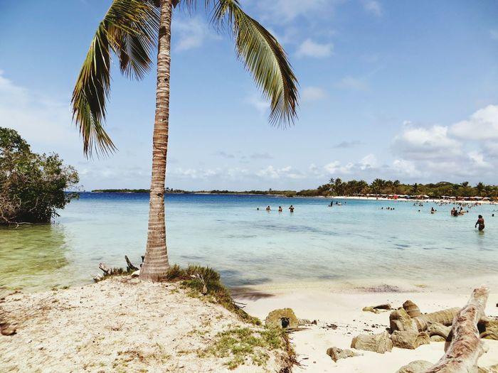 Taking Photos Relaxing Hello World Beachphotography Landscape Playa Venezuela Blue Sky First Eyeem Photo