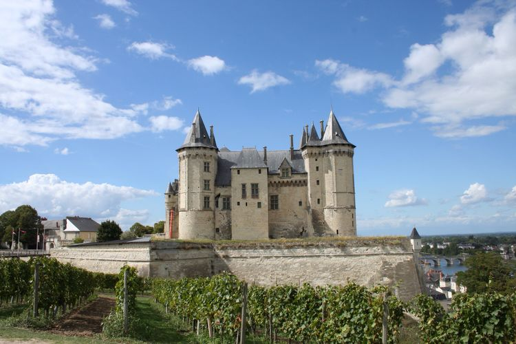 Castle and vineyard against sky