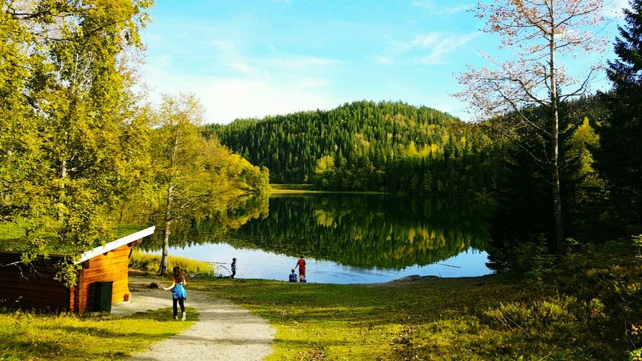 Tree Lake Sky Nature Outdoors Day Water Real People Beauty In Nature Lifestyles Beauty In Nature Growth Norway🇳🇴 Norwegian Landscape Norway Norwegian Nature Beauty In Nature Landscape Field Tree Trondheimpåsittbeste