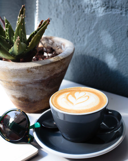 Cappuccino Close-up Coffee - Drink Coffee Cup Day Drink Food And Drink Freshness Froth Art Frothy Drink Indoors  No People Potted Plant Refreshment Saucer Table