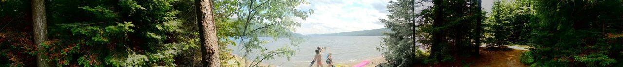 Relaxing Enjoying Life Escaping Protecting Where We Play Waterfront Sunshine Being A Beach Bum Panoramic Photography Forest Capture The Moment Live For The Story
