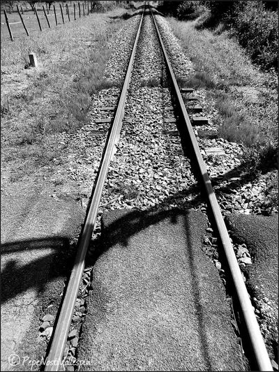 Taking Photos Rail Blackandwhite Blackandwhite Photography