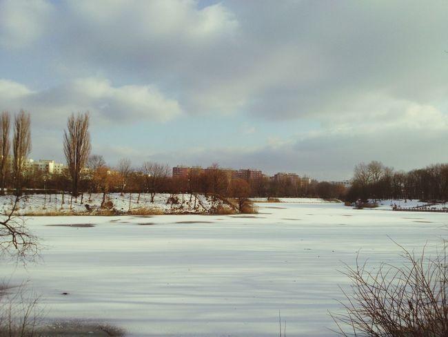 Lod Jezioro Lake Frozen Winter Wintertime