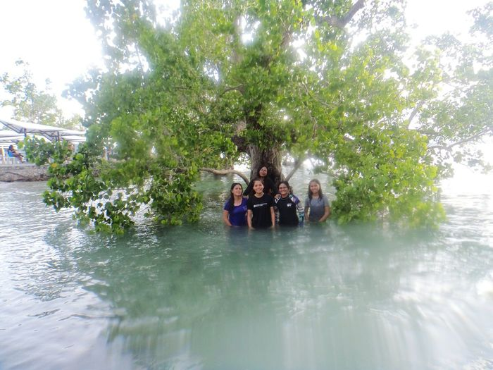 Tree Water Friendship Women Togetherness Sky