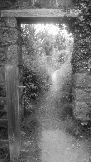 Door Hidden Worlds IntoTheUnknown........ Black & White
