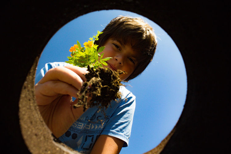 Low angle portrait of boy planting flowers in hole