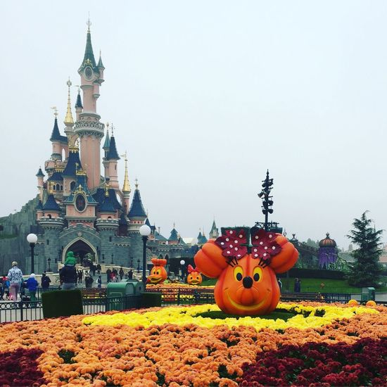 Disney Disneyland Disneyland Paris DisneyMagic  Disney Castle Sleeping Beauty Castle Disney Castle Disneyparis Halloween Halloween At Disney Minnie Mouse Mickey Mouse Flowers Halloween Decorations Halloween 2016 Halloween Pumpkins Pumpkins Disney Pumpkins Orange Color Architecture Building Exterior Flower Outdoors Famous Place