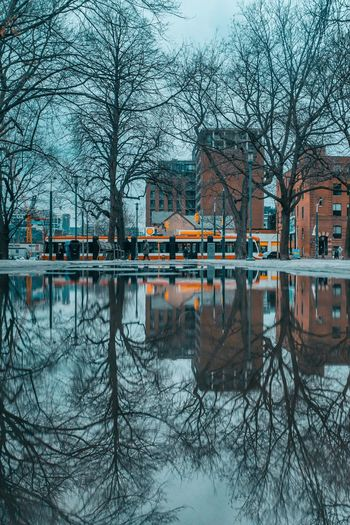 Rainy Day in the 6 Streetphotography City Reflection Built Structure Architecture Tree Building Exterior Water No People Nature Cold Temperature City Winter Outdoors Transportation Mode Of Transportation Bare Tree Reflection First Eyeem Photo