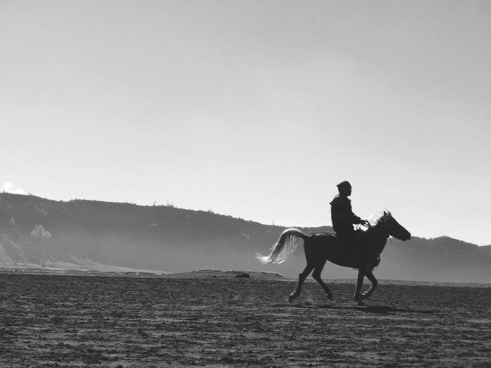 Full length of man riding horse on sand against sky