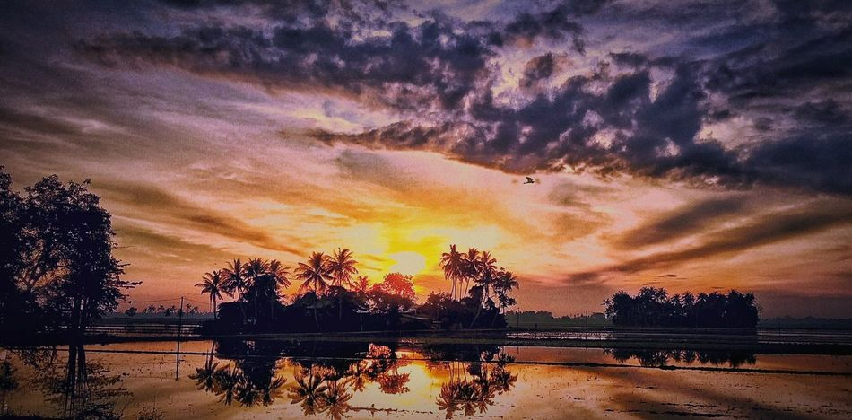 Sunrise N Sunsets Worldwide Clouds And Sky At Alor Setar Malaysia Field Beauty In Nature Sky Water Alor Setar Kedah Malaysia