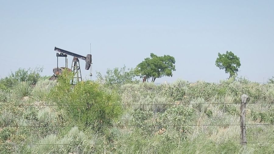 WHAT do you get when you mix pump jacks and desert? WEST TEXAS Oilfield Green Color Trees TreePorn Treetastic Pumpjack Money Black Gold Texastea Oil And Gas Tree Clear Sky Oil Pump Sky Grass Plant Barbed Wire Fence Agricultural Field Cultivated Land Boundary Chainlink Fence The Still Life Photographer - 2018 EyeEm Awards The Street Photographer - 2018 EyeEm Awards The Traveler - 2018 EyeEm Awards The Photojournalist - 2018 EyeEm Awards The Architect - 2018 EyeEm Awards