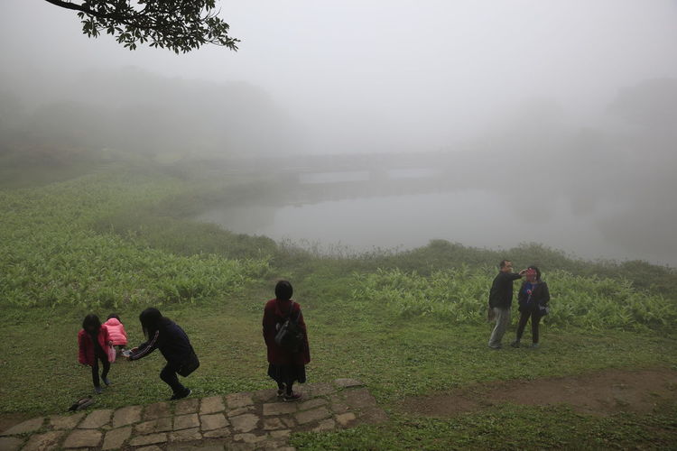Fog Plant Real People Walking Nature Tree Group Of People People Men Land Beauty In Nature Full Length Women Leisure Activity Lifestyles Environment Adult Outdoors Day