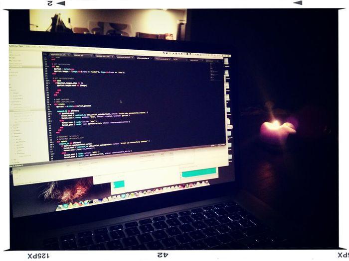 Coding Like A Monkey