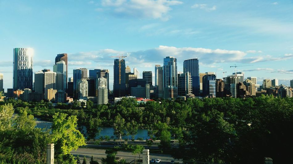 City Life YYC Forest Park Downtown Skyline Been There.
