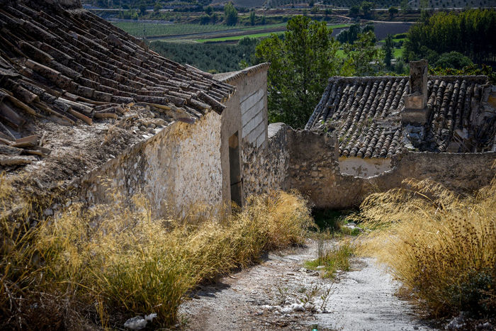 Miradas al pasado Granada, Spain EyeEm Selects EyeEmNewHere EyeEm Gallery Eyeemphotography Photography Eye4photography  History Arquitecturas 🎈👻 #ignafotos Agriculture Rural Scene Field Tranquility