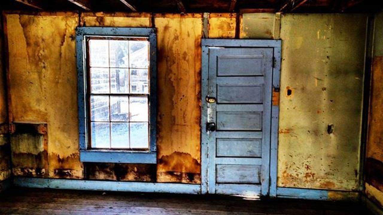 window, door, architecture, one animal, no people, house, built structure, abandoned, doorway, day, indoors, domestic animals, animal themes, pets, mammal, building exterior