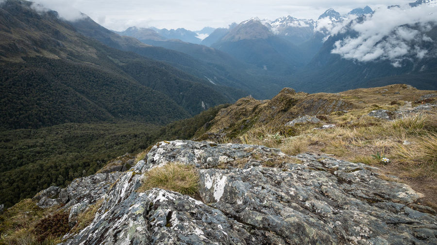 View on alpine valley with mountains with dense woods. routeburn track, new zealand
