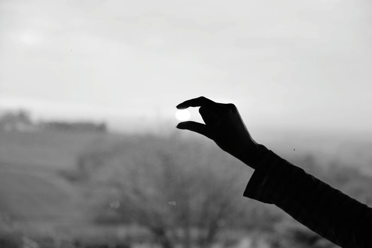 Human Body Part Sun Silhouette_collection Simple Photography Slhouette Classic Photo Sun Silhouette_collection Simple Photography Human Body Part Black And White Human Hand Bird Silhouette Sky Raven - Bird