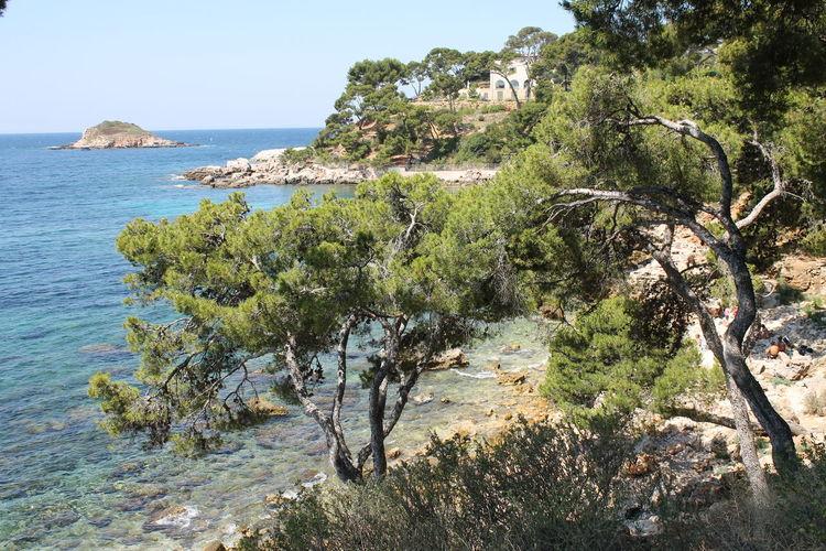 Bandol, France Calanques De Bandol Eau Claire Nature Pink Color Rochers Sea Var Cotedazur Perspectives On Nature