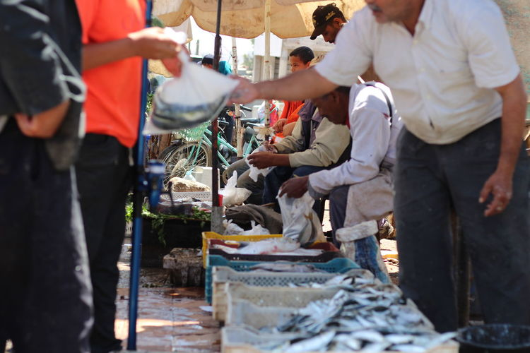Agadir market Market Real People Market Stall Food And Drink Occupation Food For Sale Small Business Fishing Industry Retail Display Seafood Fish Market Outdoors Sale Selling Choice Standing Day Retail