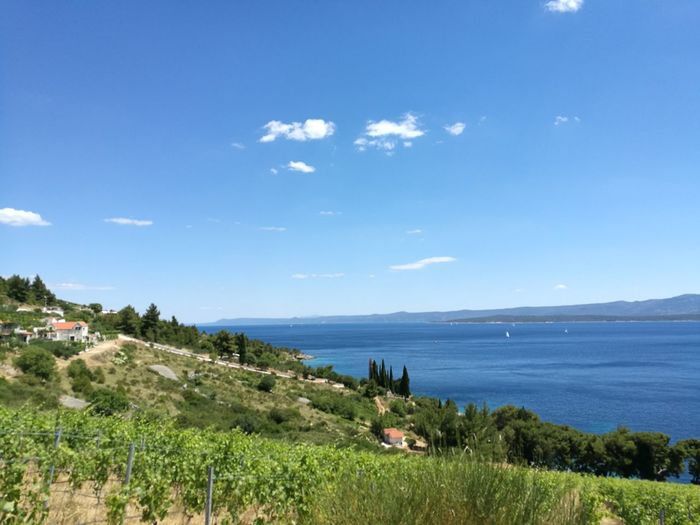 Bol Murvica Landscape Sea Sunny Mountain Nature Idyllic Travel Destinations