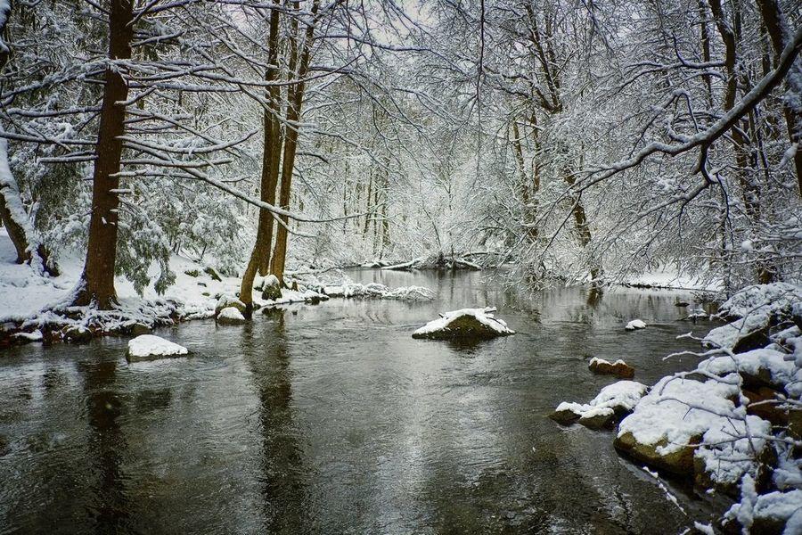 River of snow Nature Landscape Snow