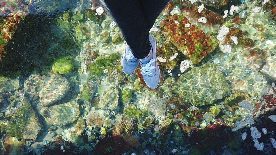 Feet Legs Water Clear Water Ocean Rocks Rocks And Water Sea EyeEm PhonePhotography Phoneography Phone Photography Just Chilling Relaxing South Africa Mosselbay Colors Complimentary Colors Showcase July 2016