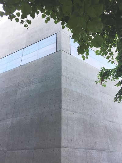 Low Angle View Built Structure Architecture Building Exterior Day Tree Outdoors Growth No People Nature Sky Landesmuseum Zürich