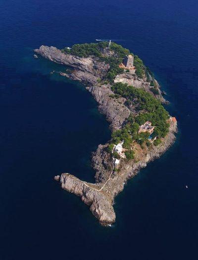 Delphin Island Magicnature 🙀😃