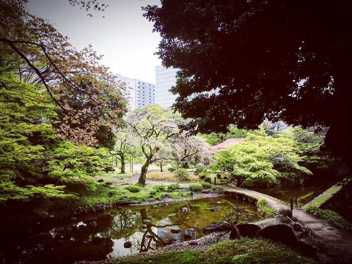 小石川 後楽園 東京ドーム 飯田橋 Tokyo Relaxing