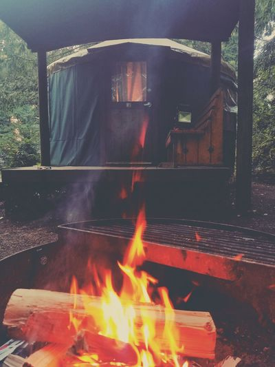 Explore Oregon Cape Lookout State Parks Of Oregon Camping Yurt Do You Travel PNW Livin Glorious Northwest Travel Destinations Campfire The Week On EyeEm