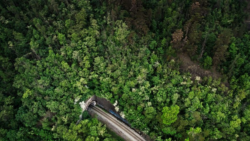 Train tunnel Green Color Aerial View Industrial Technology Nature Minimalistic Tunnel Railroad Track Rail Train Forest