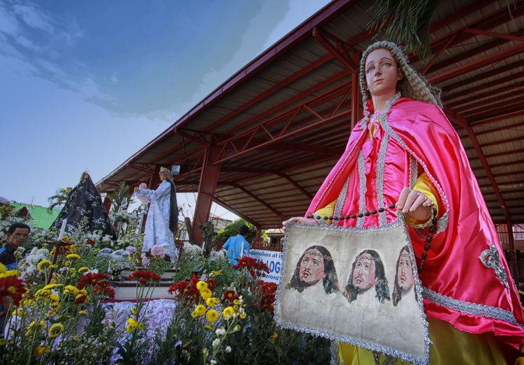 Ave Maria. Catholic Faith Flowers Holy Holyweek Jesus Low Angle View Mama Maria Outdoors Plant Saint Sky Virigin Mary