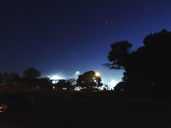Fog Park Life California Blue Night