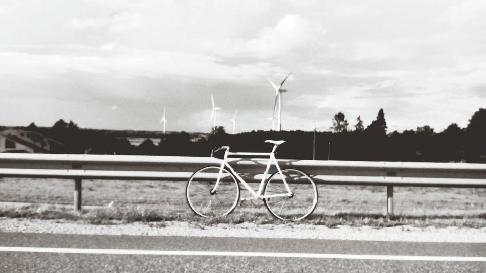 Trip Fixed Gear Estonia Wind Mill