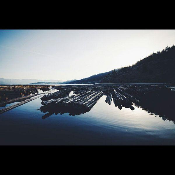It was a good day Nikon Nikontop Lightroom5 VSCO Explorekelowna Igersokanagan Lake Logs