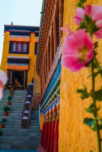 Thikse gompa or thikse monastery Balcony Buddhism Historical Building India Leh Leh Ladakh.. Mountain Temple Thiksey Travel Travel Destinations