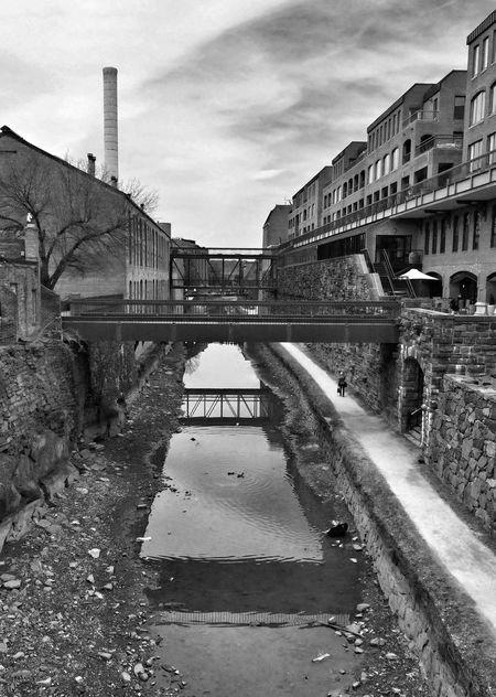 C & O Canal Streetphotography Monochrome Streetphoto_bw Street Photography