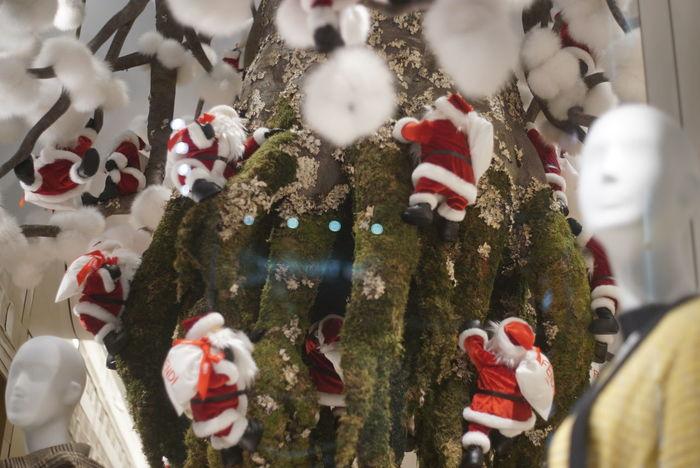 サンタクロース Santa Claus Store Window Window Display Christmas Time Christmas Around The World Night Street Night Walk From My Point Of View Snapshots Of Life Taking Photos Ginza Tokyo,Japan Christmas Christmas Decoration