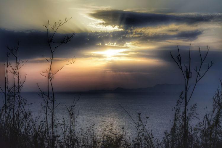 Beauty In Nature Cloud - Sky Idyllic Nature Outdoors Plant Scenics - Nature Sea Silhouette Sky Sunlight Sunset Water