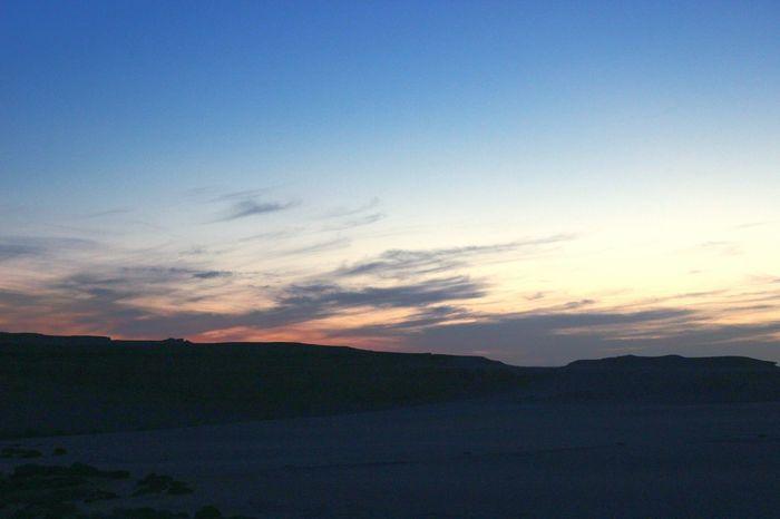 Desert Beauty Desert Life Eye4photography  My Shot