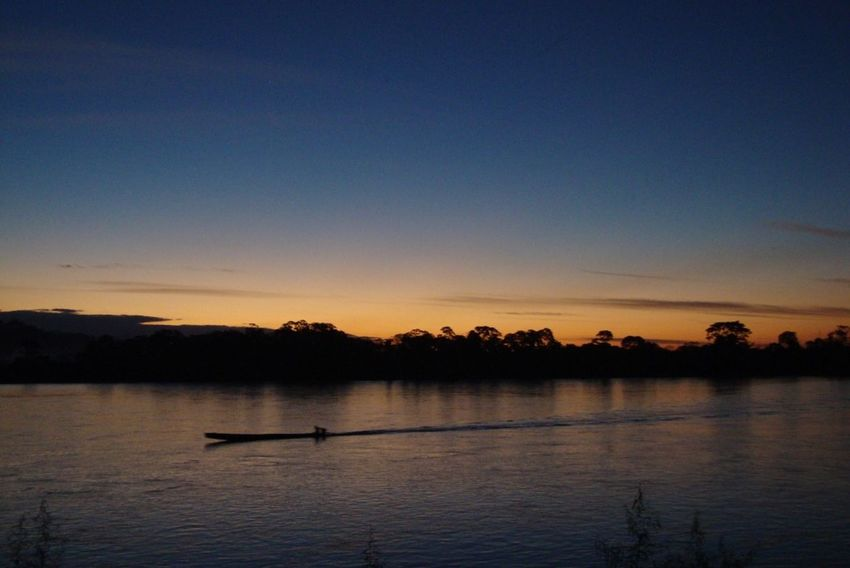 Dawn in Amazonas Beauty In Nature Bird Blue Day Lake Nature Nautical Vessel No People Outdoors Scenics Silhouette Sky Sunset Swan Tranquil Scene Tranquility Tree Water